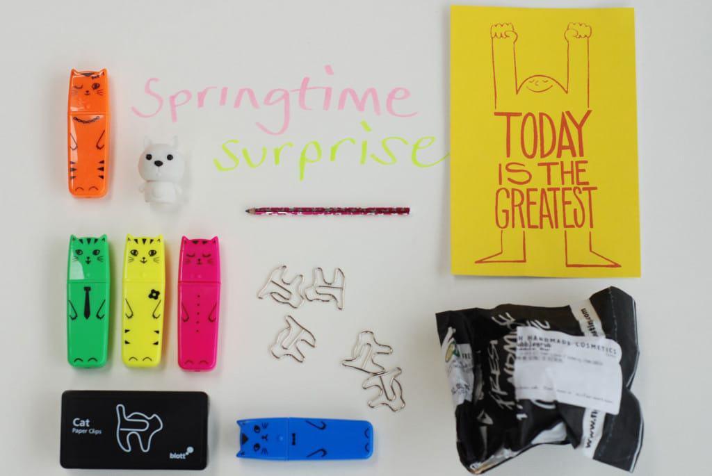 Springtime Surprise Project