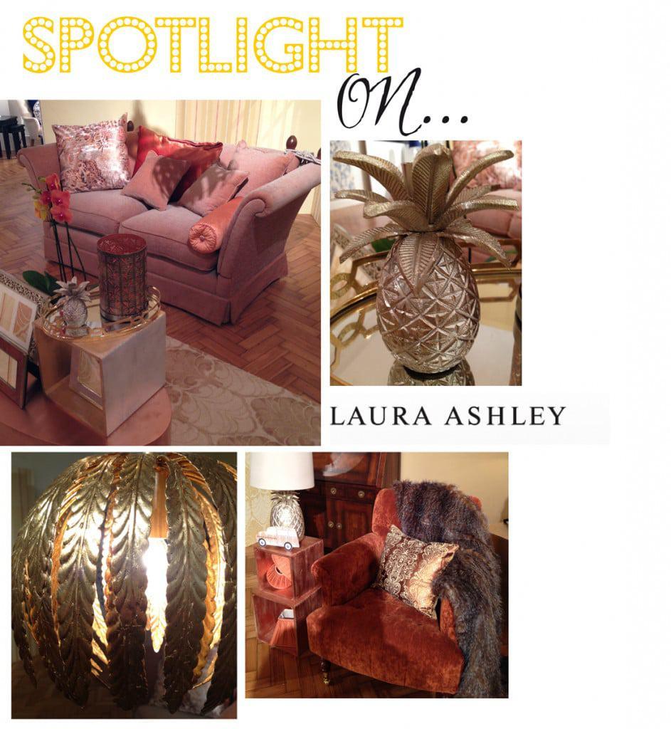 spotlight_on_laura