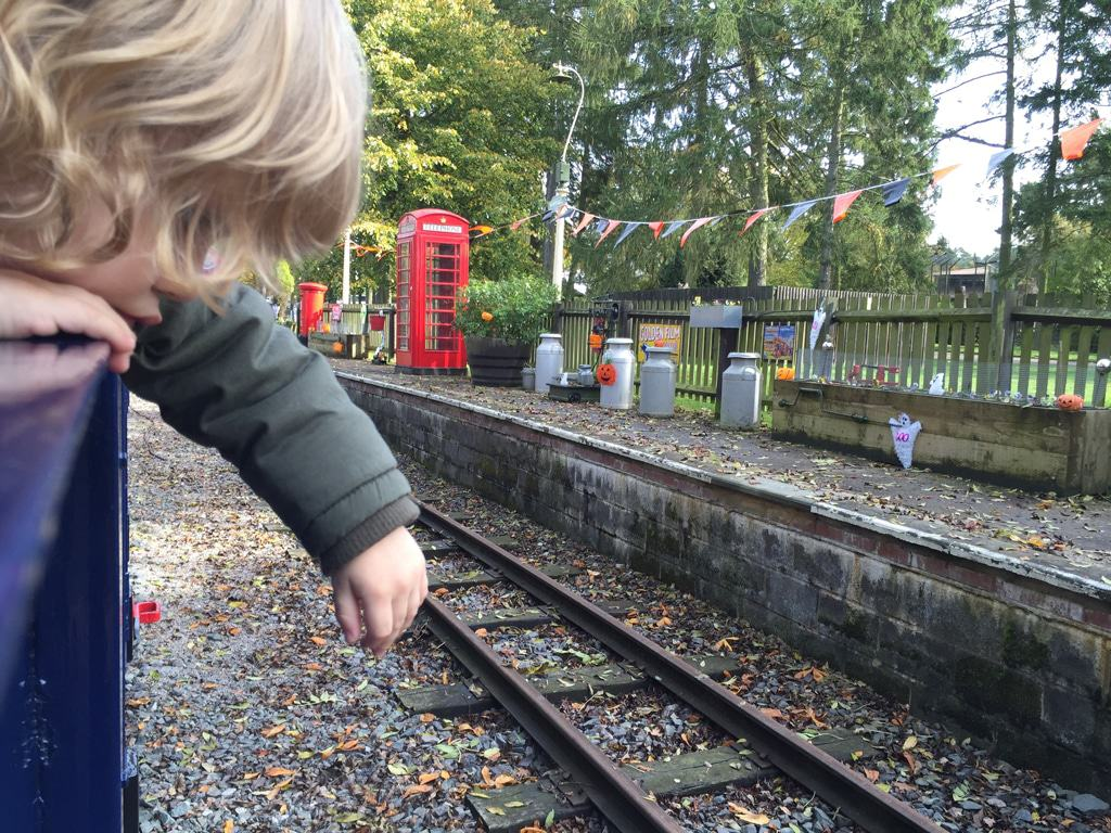 A day out at Whipsnade zoo