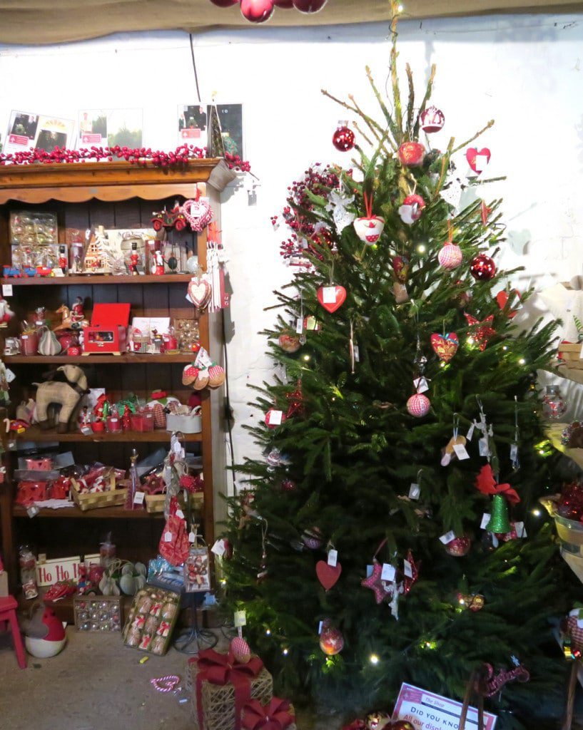 christmas-tree-shopping-christmas-tree