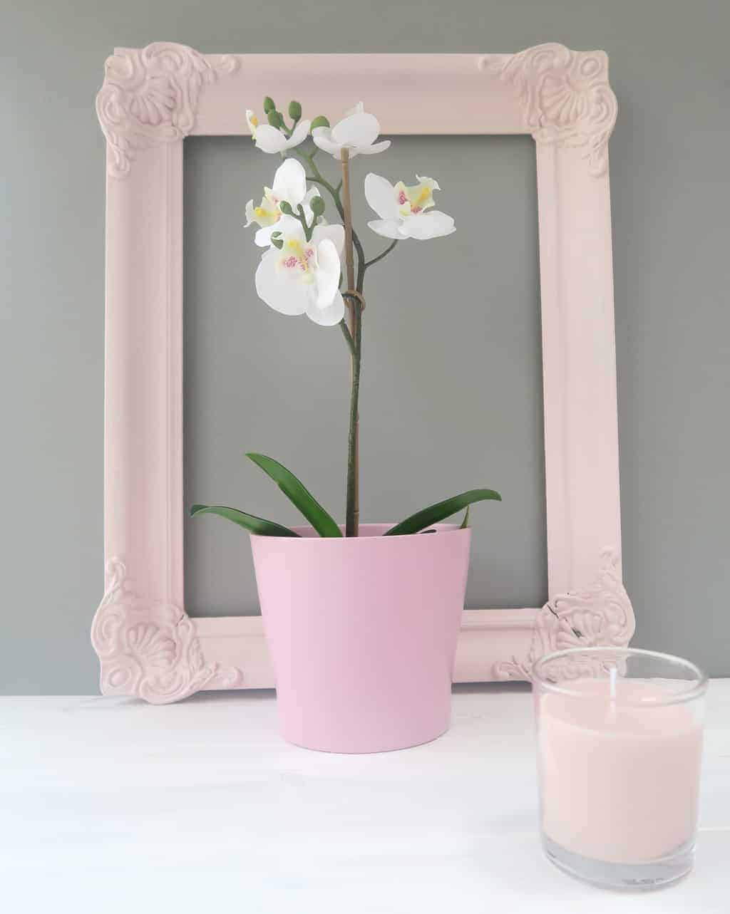 How Do You Decorate with Blush Pink?