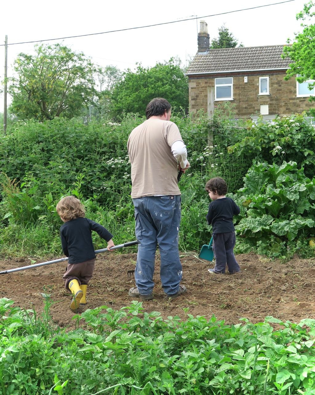 Me And Mine May 2016 at the allotment