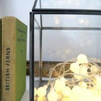 a mini greenhouse from Rose & Grey