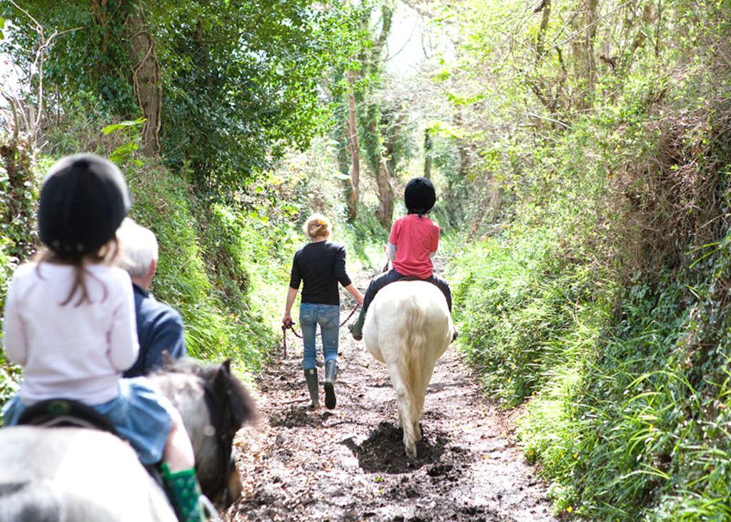 bosinver-pony-rides