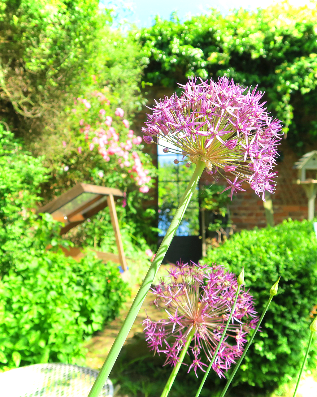 Decorating with a garden mirror