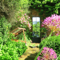 Our walled cottage garden in the summer is filled with alliums and roses. A strategically placed garden mirror will illuminate even the gloomiest corner and also give tantalising glimpses into other areas.