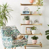 Liberty for Anthropologie