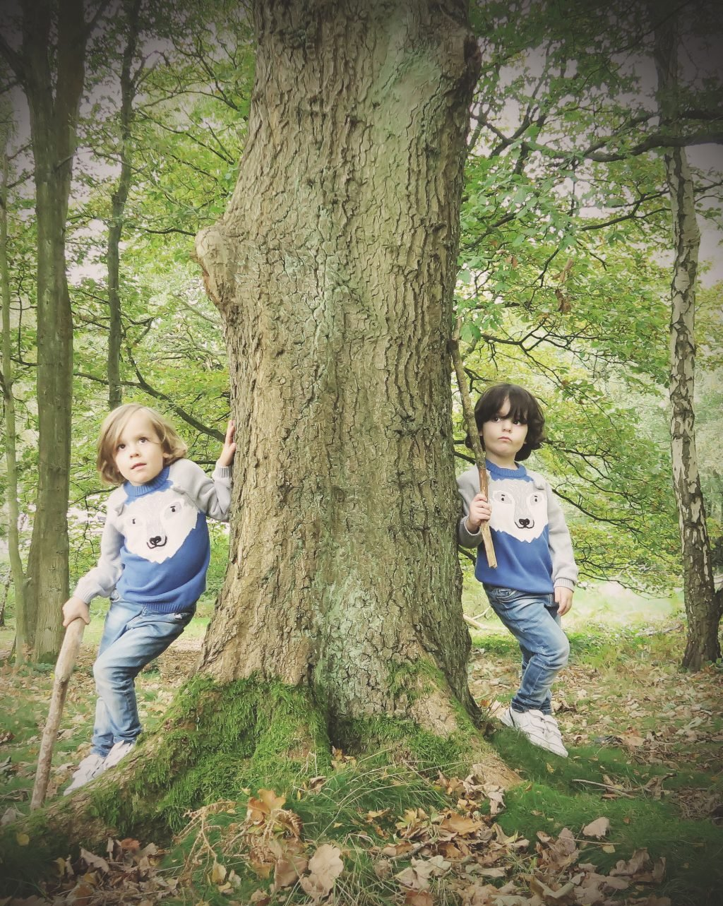 A Walk in Joules autumn collection