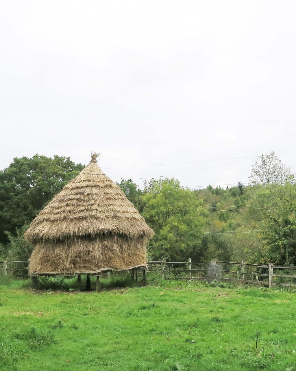 The working farm at the Chiltern Open Air Museum
